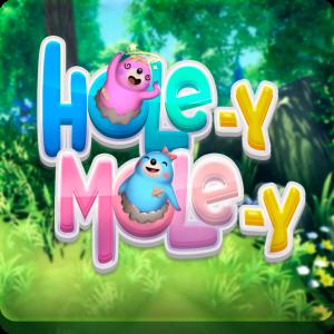 Game cover : Hole-y Mole-y